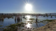 Lake Fyans in der Abendsonne
