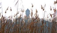 Neustrelitz, Wasserturm, Glambecker See