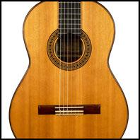Raifort guitare classique