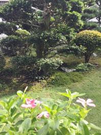 癒しの和エステ「心美」庭