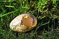 箱庭療法、卵の殻のイメージ写真egg-3471439_1280