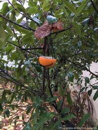 """Atelier de jardinage """"Préserver la biodiversité à l'arrivée du froid"""""""