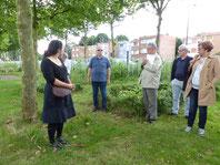 Le jury du Label Villes et Villages Fleuris découvre le jardin des AJOnc à Lens
