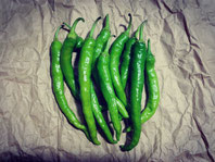 【ピーマン】カラーピーマンをいくつか、甘唐辛子(万願寺、伏見甘長、紫唐辛子など)、唐辛子(中辛こしょう、八房など)、F1品種では、病気に強い品種を2品種くらい栽培しています。