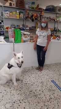 Futterspenden mit weißem Schäferhund