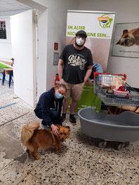 Futterspenden für die Tiertafel