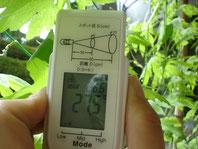 緑のカーテンの葉っぱの陰の温度 27.5℃