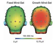 Mathe Lernen Gehirn Hirnforschung