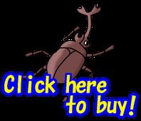 昆虫名人、LINE、スタンプ、昆虫、虫、一覧画像 insects  linesticker