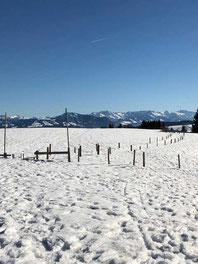 Winterwanderweg zwischen Zaunpfählen