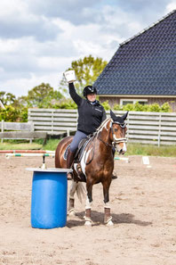 Working Equitation Ostfriesland