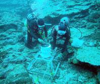 昨年11月に石垣島周辺海域で実施した発電可能性調査で、海底に波高計を設置する作業員(県提供)