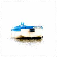barque de peche, blanche et bleu vu arriere sur la plaque de son nom fidelité marais