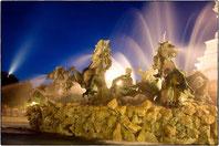 chevaux d'eau