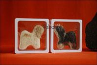 Filz Tibet Terrier