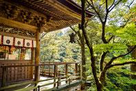 Liebe, Freude, Wohlstand, Freiheit, Gesundheit, Fische, Japan