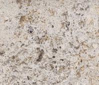 Muschelkalk beige-grau gesandstrahlt