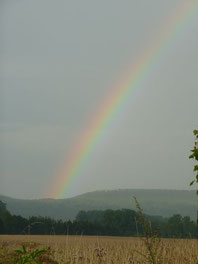 Ein Regenbogen über meinem Jagdrevier in Dutzenthal, im Hintergrung der Wald, im Vordergung ein Feld des hier wirtschaftenden Bio-Bauern.