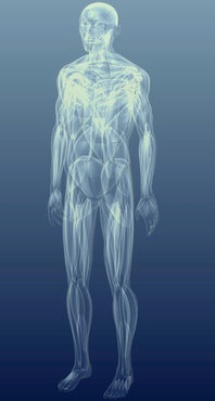 Gesunde Faszien und Körperhaltung mit Rolfing