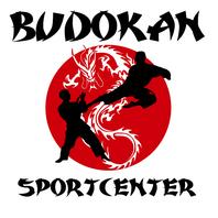 Logo Budokan