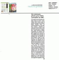 concours photo leucemie myeloide chronique leucémie myéloïde lmc cml  cancer sang