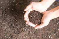 花壇の土の写真