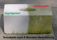 Nanoprotect-Steinimprägnierung gegen Verschmutzung und Grünbelag