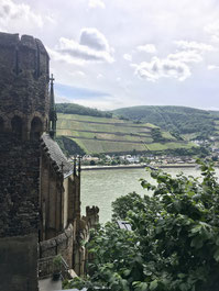 Mittelrhein castle and vineyards (c) BottleStops