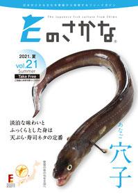 Eのさかな19号太刀魚