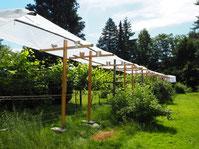 Die Dachkonstruktion