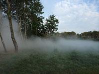 Brume à Chaumont sur Loire