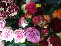 Fleurs Bouquet Roses Composition Noix de coco