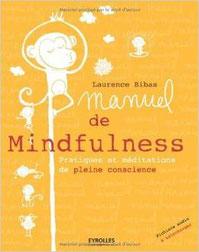 MBSR, meditation de pleine conscience Guillaume Rodolphe nantes