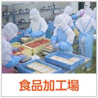 株式会社エム エイ ティ 商品カテゴリ「食品加工場」