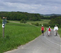 Nordic Walking ~ Kurse, Touren, Events