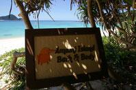 Amami Island Bath & Body