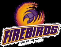 Queensland Firebirds Logo