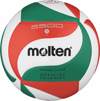 Volleyball kaufen Ball Bälle Molten Ballshop Onlineshop