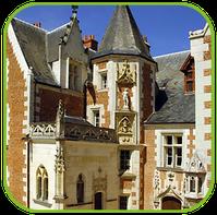 Camping Sites et Paysages Les Saules à Cheverny - Loire Valley - Notre partenaire le château du Clos Lucé de Léonard de Vinci