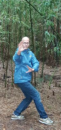 Wolfgang Schwalenberg Bagua Zhang Shenwu