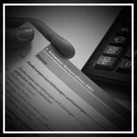 Organisation und Optimierung Finanz- und Rechnungswesen
