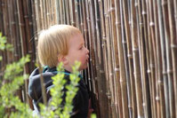 Guckguck, ein Kind schaut aus dem Garten