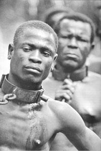 Histoire de la traite négrière