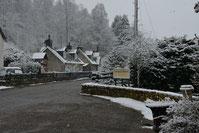 Schnee am Morgen in Tomich