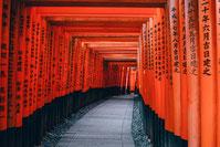fushimi Inari Taisha  sejour a la carte avec guide francophone au Japon