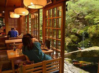 rakusho koi cafe kyoto guide francophone prive kyoto