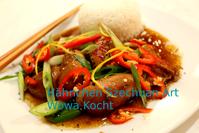 chinesisches szechuan hähnchen rezept sichuan art