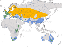 Karte zur Verbreitung des Haubentauchers (Podiceps cristatus)