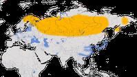 Karte zur Verbreitung des Zwergsägers (Mergellus albellus)