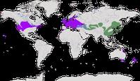 Karte zur Verbreitung des Jagdfasan (Phasianus colchic)